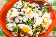 Salad with egg, radish and cucumber. Royalty Free Stock Images