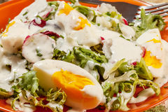 Salad with egg, radish and cucumber. Royalty Free Stock Photography