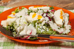 Salad with egg, radish and cucumber. Stock Photography