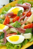 Salad with eggs, cherry tomatoes and anchovies. Stock Images