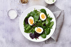 Salad with eggs and green leaves Stock Images