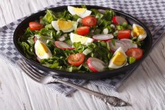 Salad with eggs, radishes and sorrel closeup. Horizontal. Spring salad with eggs, tomatoes, radishes and sorrel close up on a plate. Horizontal Royalty Free Stock Photography