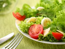 Salad with eggs and tomatoes Royalty Free Stock Image
