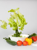 Salad with fallinf lettuce Stock Photos