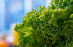 Salad at the farmers market, close up. Selective focus Stock Image