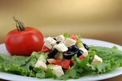 Salad with feta cheese and fresh vegetables Royalty Free Stock Photo