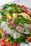 Salad with Fish Royalty Free Stock Images