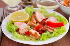Salad with fish Royalty Free Stock Image