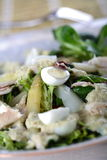 Salad with fish and asparagus Royalty Free Stock Photos