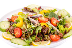 Salad with fish Stock Image
