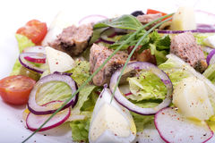 Salad with fish Stock Images