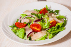 Salad with fish Royalty Free Stock Photo