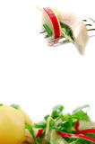 Salad and fork Royalty Free Stock Photo