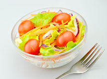 Salad  and fork Royalty Free Stock Image