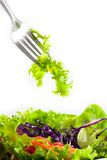 Salad on fork Stock Photography