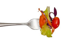 Salad  and fork. Fresh red tomato and salad on a fork. Isolated Royalty Free Stock Image