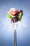 Salad on fork Stock Images