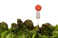 Salad Forks & Tomato Royalty Free Stock Photo