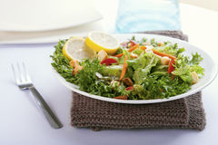 Salad with French dressing. Closeup salad with French dressing stock image