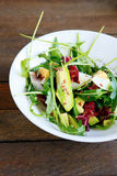 Salad with fresh avocado Royalty Free Stock Photos