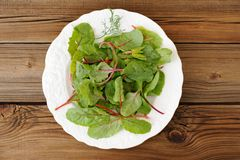 Salad of fresh chard leaves in white plate on wooden background Stock Photo