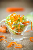 Salad of fresh chopped cabbage and carrots Royalty Free Stock Photography