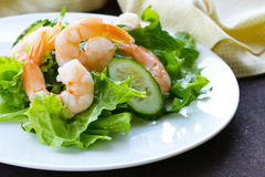 Salad with fresh cucumbers and shrimps Royalty Free Stock Photography