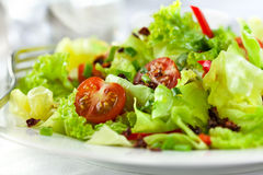 Salad with fresh and dry tomatoes Stock Photography