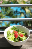 Salad. Fresh green salad it is good for diet and good health Stock Image
