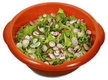 Salad. Fresh green leaf lettuce, and radishes in a plastic red bowl, isolated on white background Royalty Free Stock Photo