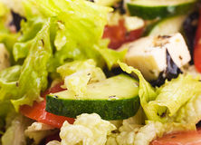 Salad from fresh green-stuffs. And cheese with spices Royalty Free Stock Photo