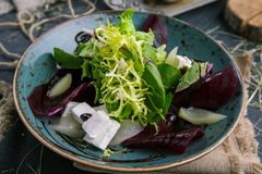 Salad of fresh greens, cheese and radish in rustic style royalty free stock photography