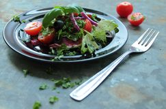Salad with fresh lettuce and tomatoes Royalty Free Stock Image