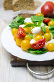 Salad with fresh mozzarella, tomatoes and basil. Royalty Free Stock Photography