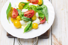 Salad with fresh mozzarella, tomatoes and basil. Stock Images