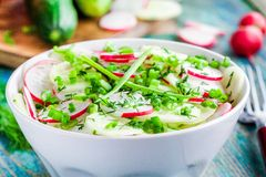 Salad of fresh organic radish and cucumber in white bowl closeup Stock Images