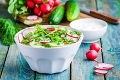 Salad of fresh organic radish and cucumber in white bowl. Salad of fresh organic radish and cucumber with dill and green onions in white bowl Stock Images