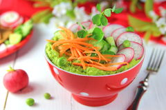 Salad with fresh radishes. Avocado,green peas,cucumber and carrots Stock Images