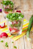 Salad with fresh radishes and onions. Close up Royalty Free Stock Photos