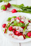 Salad of fresh radishes and onions. Closeup Royalty Free Stock Photos
