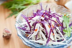 Salad with fresh raw cabbage. Close-up Royalty Free Stock Photos