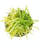 Salad with fresh savoy cabbage ,top view Stock Photo