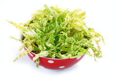 Salad with fresh savoy cabbage on white background Stock Images