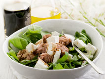 Salad with fresh spinach and tuna Royalty Free Stock Photo
