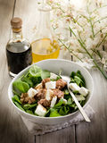 Salad with fresh spinach and tuna Stock Image