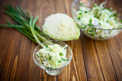 Salad of fresh spring cabbage Stock Images