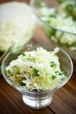 Salad of fresh spring cabbage Stock Photos