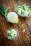 Salad of fresh spring cabbage Royalty Free Stock Photo