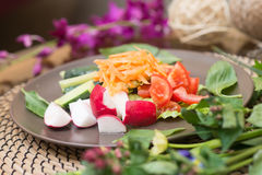Salad with fresh tomato cheese, olive, radish. Appetizer. Healthy. Restaurant Royalty Free Stock Photo