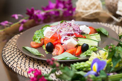 Salad with fresh tomato cheese, olive, radish. Appetizer. Healthy. Restaurant Stock Photos